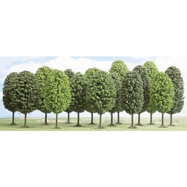 Lot of 12 deciduous trees