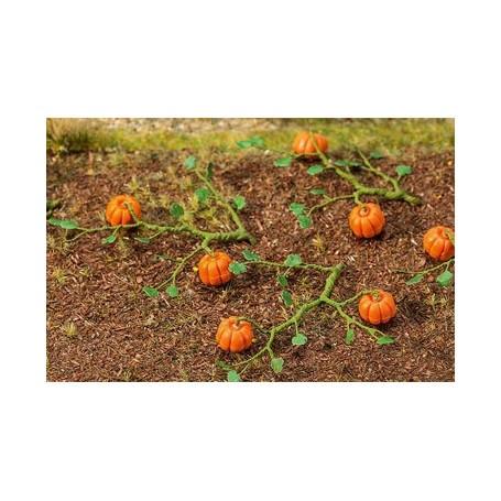 Pumpkins 6 pieces