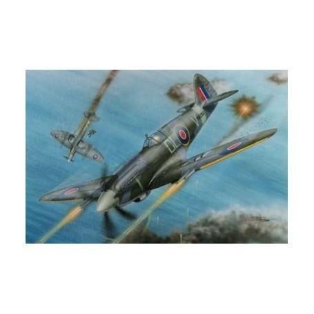 Supermarine Spitfire F Mk.21 'No.91 Sq. RAF in WWII'